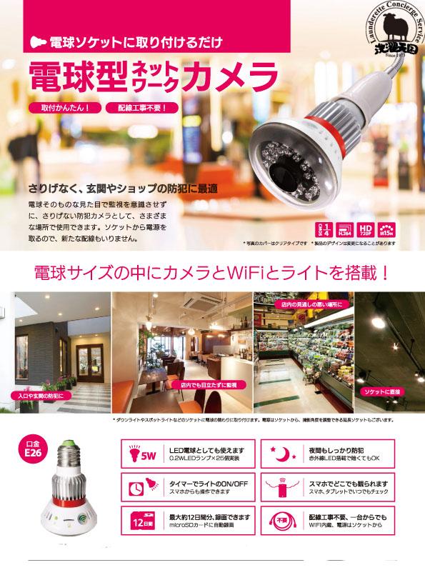 電球型カメラ2